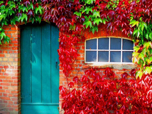 Colorful Door Design Ideas