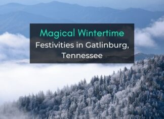 wintertime festive