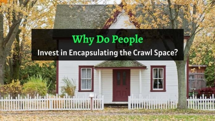 Crawl Space